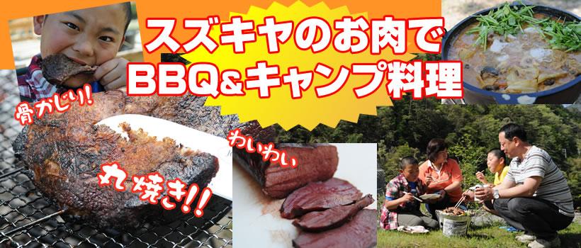 /bn/home_camp.jpg